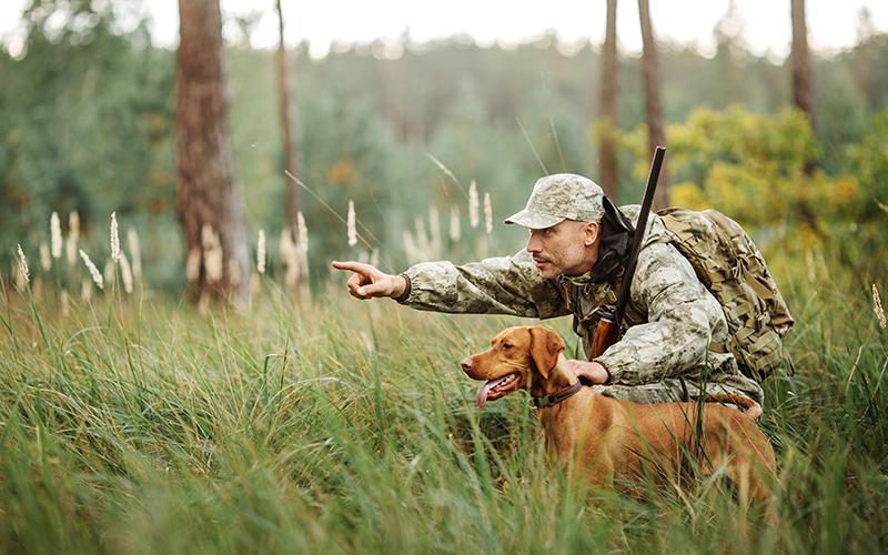 Охотничий туризм в Беларуси