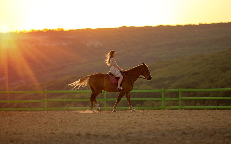 Loshademania equestrian club