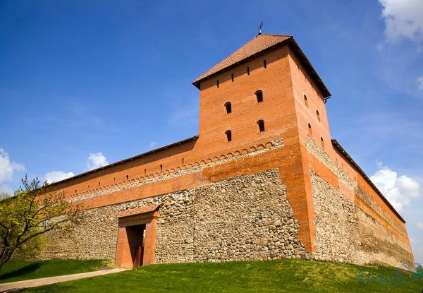 Zamek w Lidzie