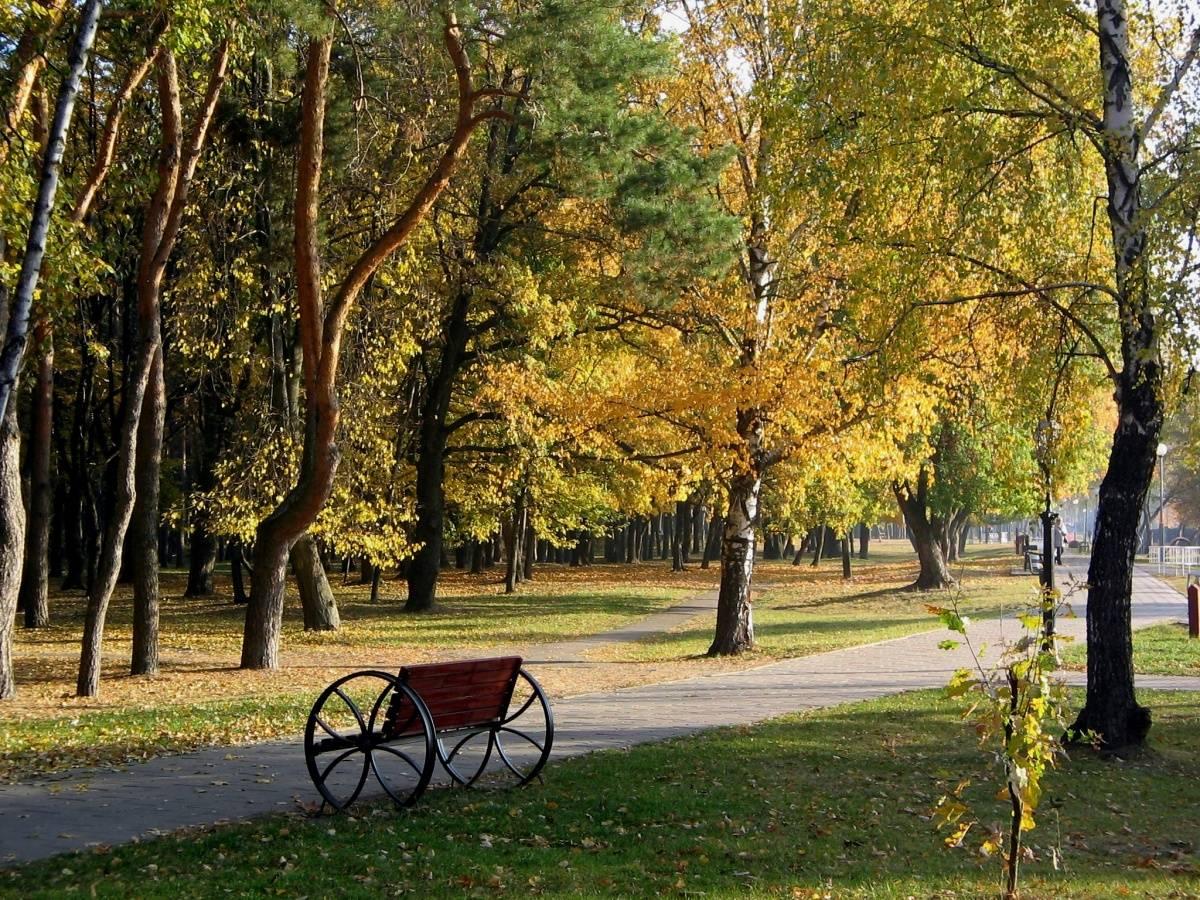 Парк Фестивальный