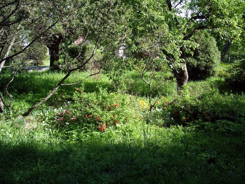 Ботанический сад Витебск